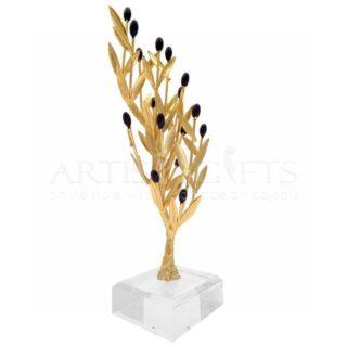 Δέντρο Ελιάς Ψηλό Με Καρπούς Σε Πλέξιγκλας
