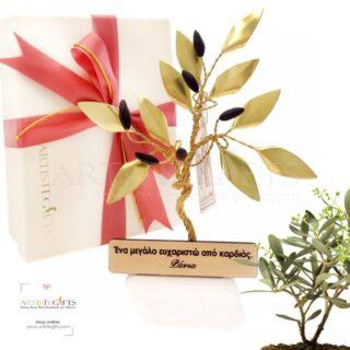 κλαδί ελιάς, βραβεία, αναμνηστικά δώρα με ελιά, δώρα συνταξιοδότησης, elia, elies, βραβείο, δώρα με ελιές, επιχειρηματικά δώρα, ελληνικά δώρα, olive tree, olive, awards, award, δώρα με ελιές δώρα για εγκαίνια, δώρα για νέο σπίτι, προσωποποιημένα δώρα, δώρα ευχαριστίας, 3