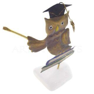 Κουκουβάγια Με Καπέλο Αποφοίτησης, Καθισμένη σε Βιβλία